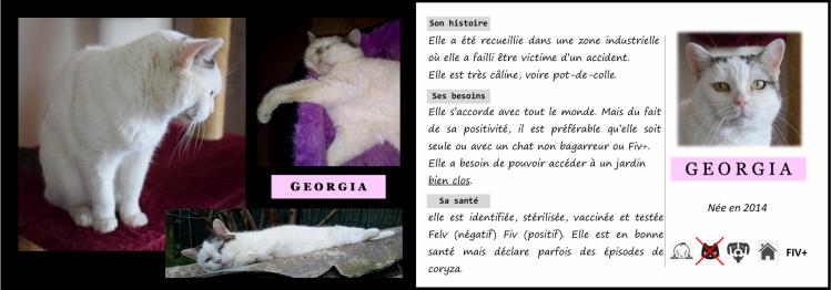 Presentation georgia 1