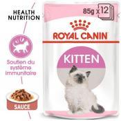 Sachet kitten rc